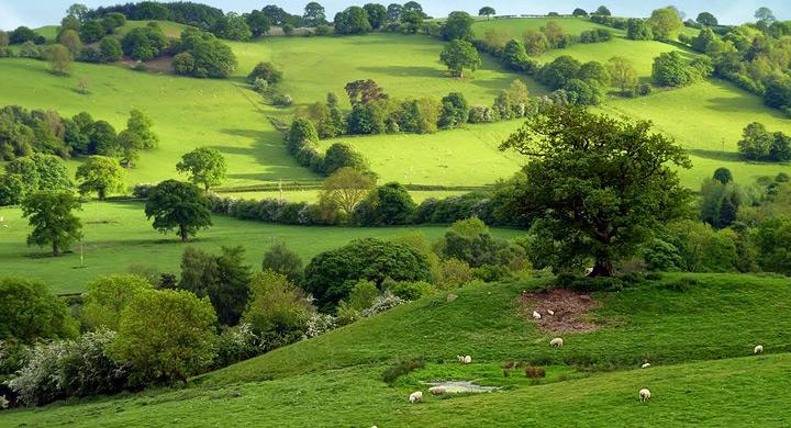 Ventajas de vivir en un ambiente natural y tranquilo
